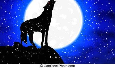 howls, entiers, loup, neige, lune