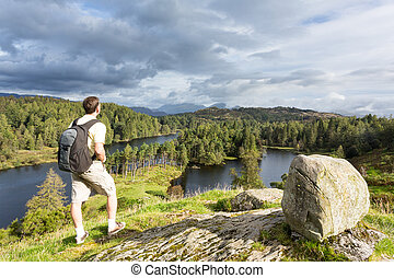 hows,  tarn,  district, sur, Lac, anglaise, vue