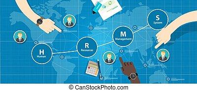 hrms, 인적 자원, 관리, 체계