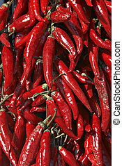 htpepper, ungarn, rotes