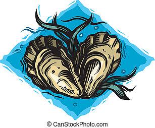 huîtres, deux