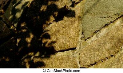 huśtać się, liście, sylwetka, cień