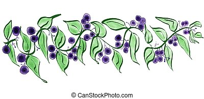 Illustration of a huckleberry branch with berries and leaves
