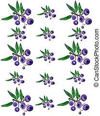 Huckleberry pattern with berries and leaves
