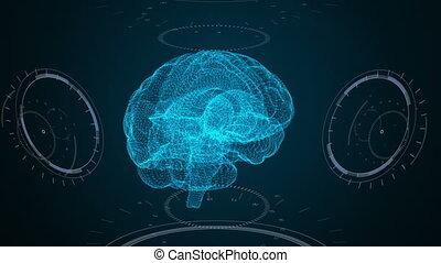 hud, splot, futurystyczny, mózg, interface.