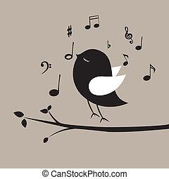 hudba, ptáček