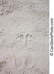 huellas, en, el, playa arenosa