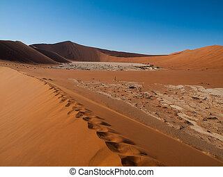 huellas, en la arena, de, desierto de namib, rojo, dunas