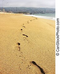 huellas, en, playa arenosa, de, valparaiso, chile