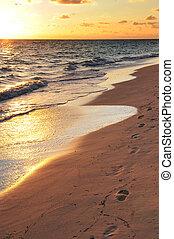 huellas, en, playa arenosa, en, salida del sol
