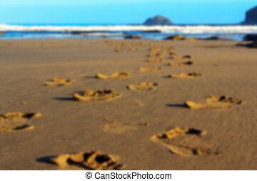 huellas, polzeath, enfoque., playa de arena, afuera