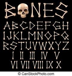 huesos, alfabeto, vector