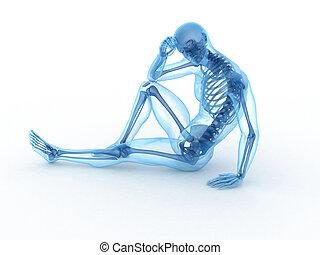 huesos, visible, macho, sentado