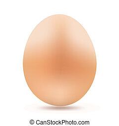 huevo amarillo, blanco