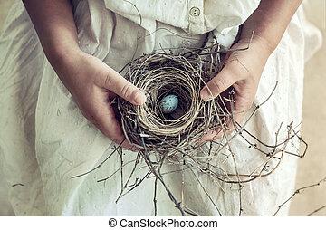 huevo azul, nido, moteado, tenencia, niña, regazo, pájaro