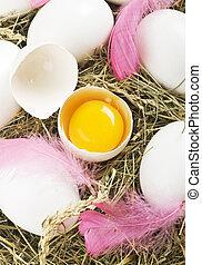 huevo blanco