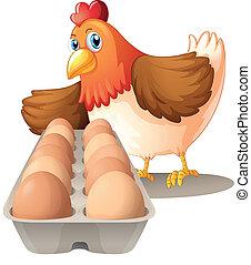 huevos, bandeja, gallina, ella