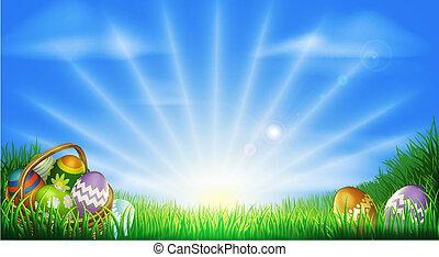 huevos de pascua, campo, plano de fondo
