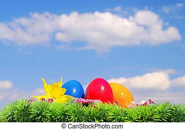 huevos de pascua, en, flor, pradera, y, cielo, 09