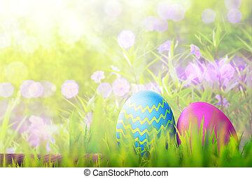 huevos de pascua, en, tabla de madera, cubierta, con, hierba verde