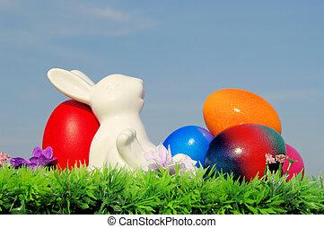 huevos de pascua, flor, cielo, pradera