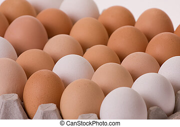huevos, en, caja de cartón de huevo