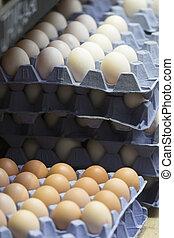 huevos, en la exhibición