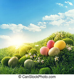 huevos, Pascua, colorido
