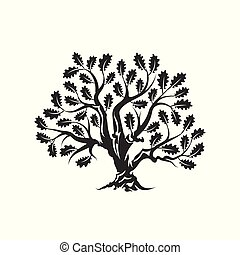 Huge and sacred oak tree silhouette logo badge isolated on...