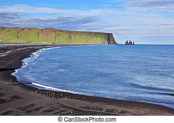 Huge arched beach with black sand