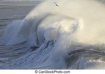 Huge breaking wave