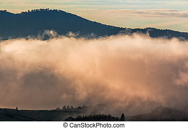 huge cloud in morning light over the valley. beautiful...