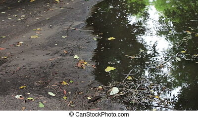 Huge dirty black puddle after the rain on the ground - A ...