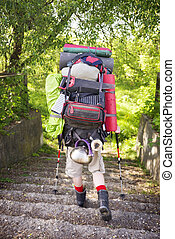 huge novice backpack in the mountains