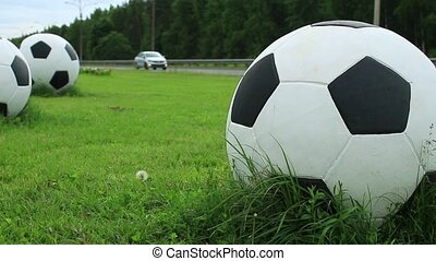 Huge soccer balls on the green field by the road
