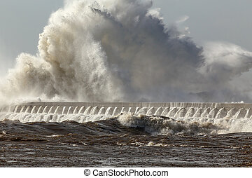 Huge stormy wave