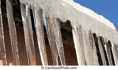 Huge thick icicles hanging from the roofs are melting under...