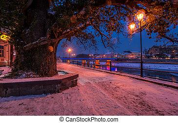 huge tree and lantern on the winter embankment. beautiful...