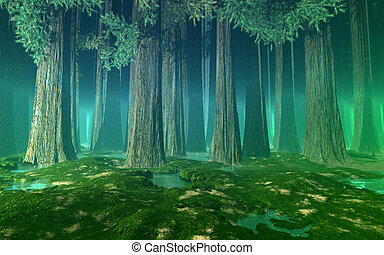 Huge trees green misty forest - Misty forest with giant fir ...