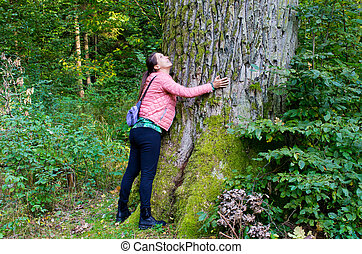 Huge trunk of the tree and woman - Bialowieza, Poland
