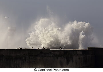 Huge wave splash and spray