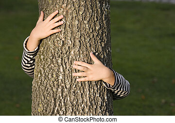 huging, a, arbre