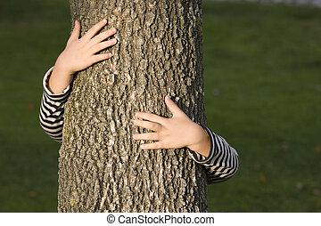 huging, um, árvore