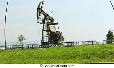 huile, baku, pompe, azerbaïdjan, vert, mer, caspian, herbe