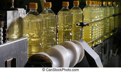 huile, bouteilles, tournesol, convoyeur, raies, une, en ...