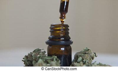 huile, fleurs, bouteille, cbd, chanvre
