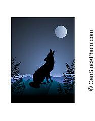 huilend, nacht, wolf, achtergrond, maan