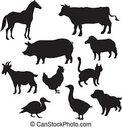 huiselijk, silhouettes, dieren