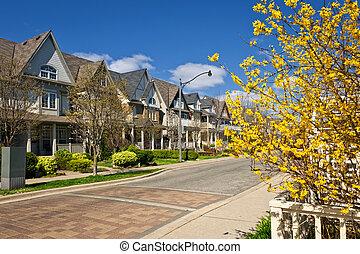 huisen, op, woongebied, straat, in, lente