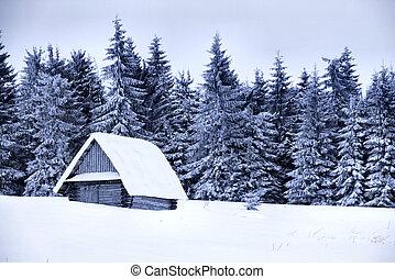 huisje, bedekt, sneeuw